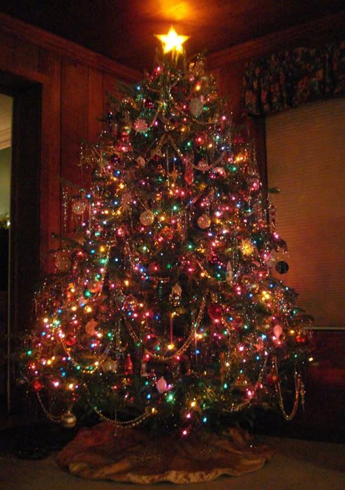 Image result for multi colored light christmas tree ideas