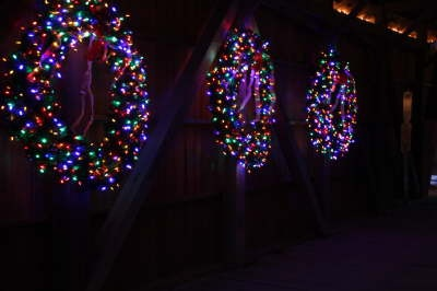 Image result for multi colored light christmas